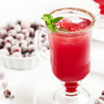 Cranberry Ginger Fizz Cocktail