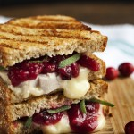 Turkey, Brie and Cranberry Mustard Panini