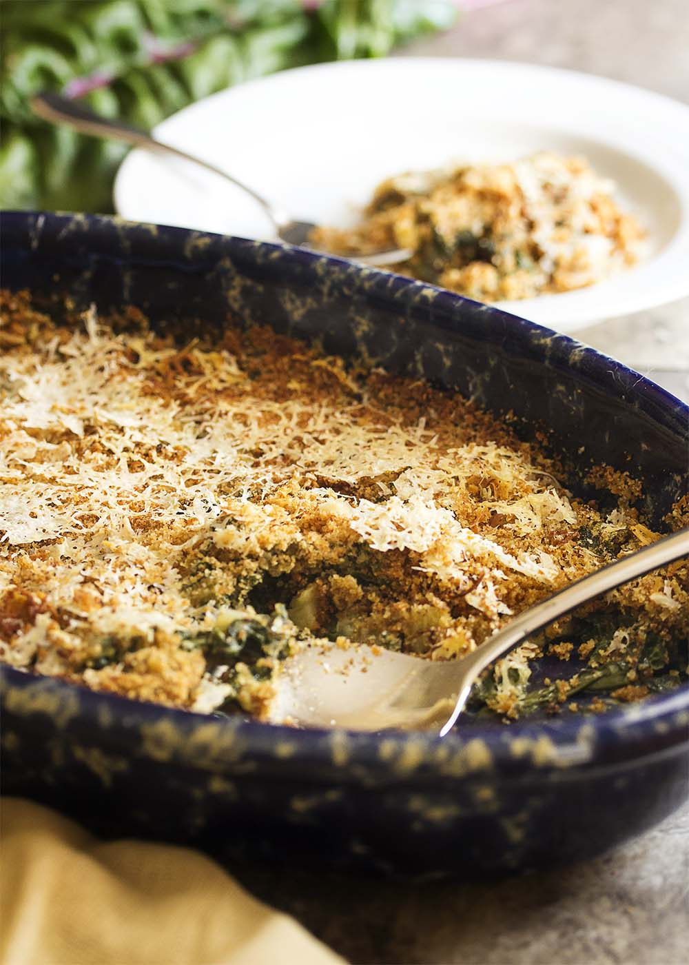 Easy Swiss Chard Gratin - This easy chard gratin is all about the greens as they are cooked in milk and then topped with breadcrumbs and a handful of parmesan. This a great gratin for when you have more greens than you know what to do with - chard, kale, turnip greens, beet greens, spinach. Try a mix of different greens! | justalittlebitofbacon.com