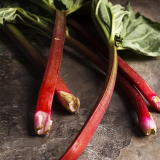 Ingredient Spotlight: Rhubarb - With its deep, red stalks and intensely sour and puckery flavor, rhubarb is great in desserts as well as in stews and savory sauces. If all you know is strawberry rhubarb pie, you'll be impressed by rhubarb's versatility. | justalittlebitofbacon.com