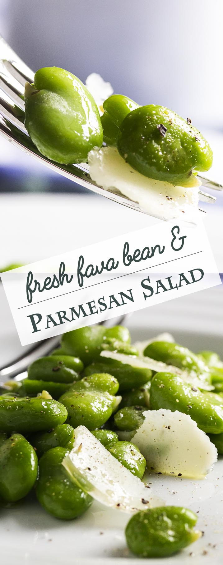 One great way to enjoy fava beans is in this healthy spring inspired fresh fava bean and parmesan salad, which is tossed lightly with a little olive oil and sprinkled with salt and pepper. Simple, but oh so good! | justalittlebitofbacon.com