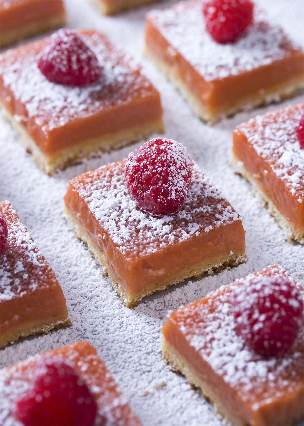 Orangey-red lemon raspberry squares have been topped with a fresh raspberry and dusted with confectioners' sugar.