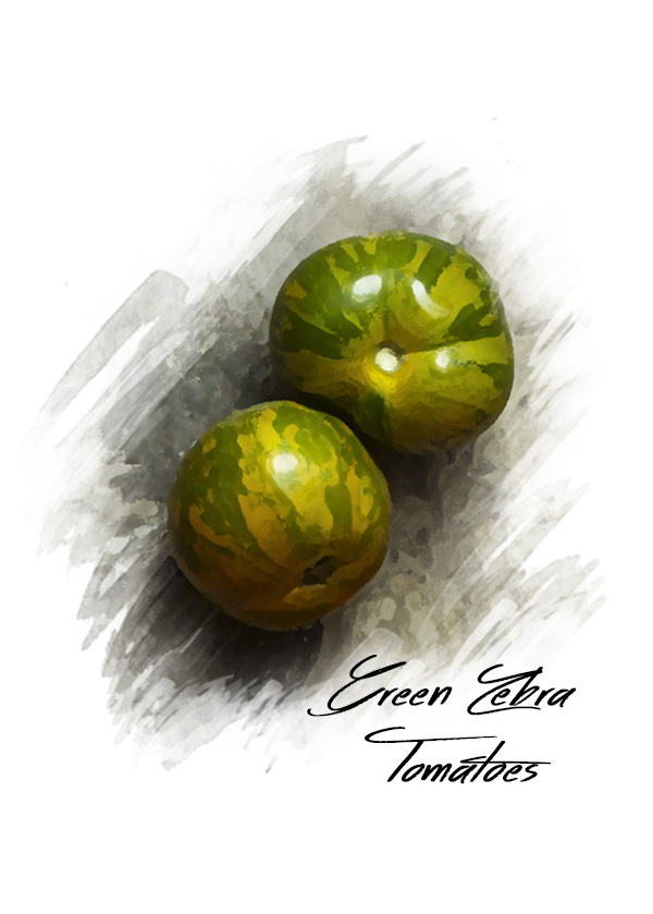 Watercolor style photo of green striped heirloom tomatoes