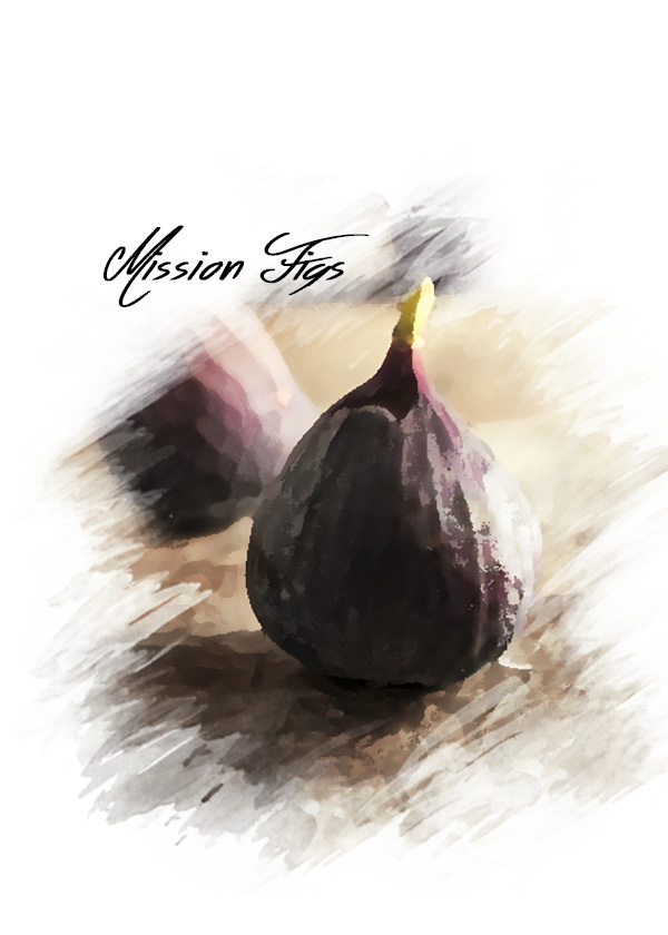 Watercolor style photo of figs