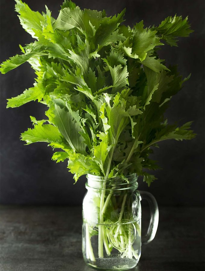 What is mizuna? What do you make with these leafy greens? What are the health benefits? Find recipes, history, and more in this ingredient spotlight.