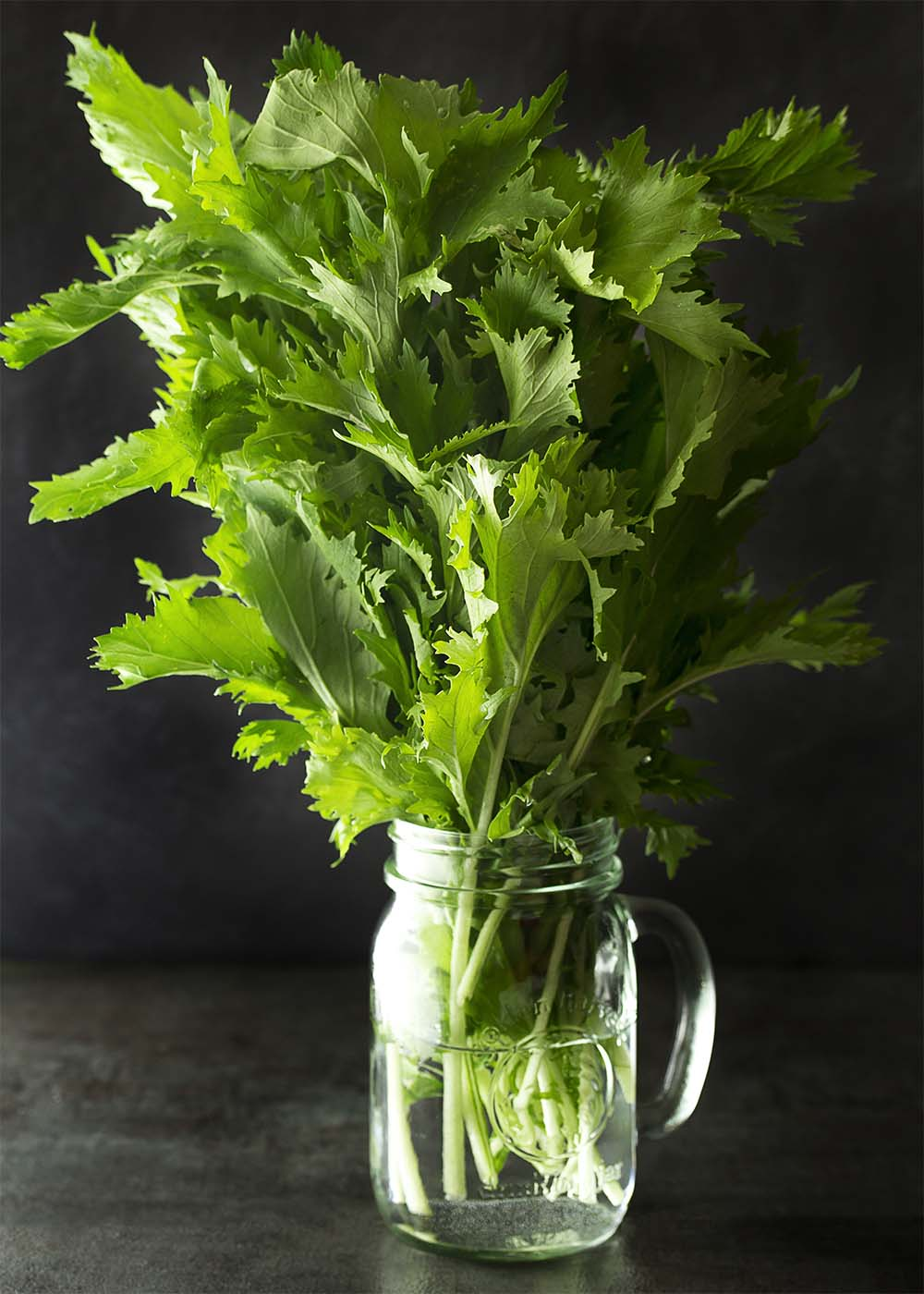 Mizuna greens upright in a container of water showing the feathery leaves.