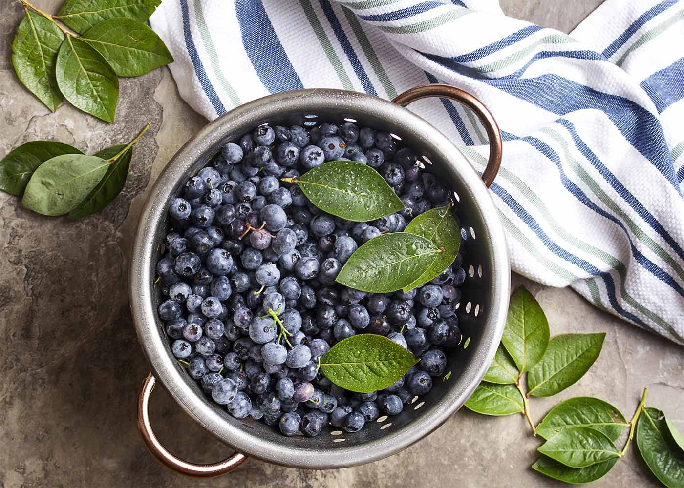 Freshly washed blueberries in a colander with blueberry leaves scattered about.