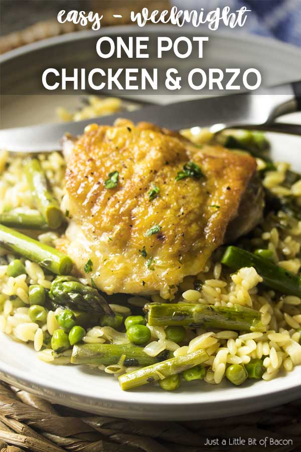 Recipe in a bowl with text overlay - One Pot Chicken and Orzo.